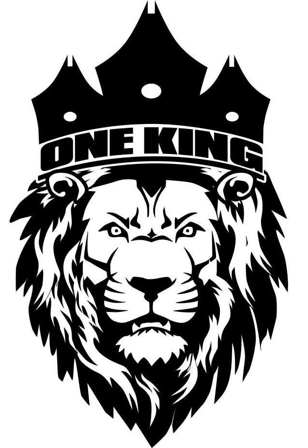 One King Sports