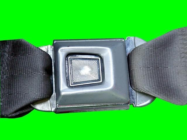 essay on seat belt use